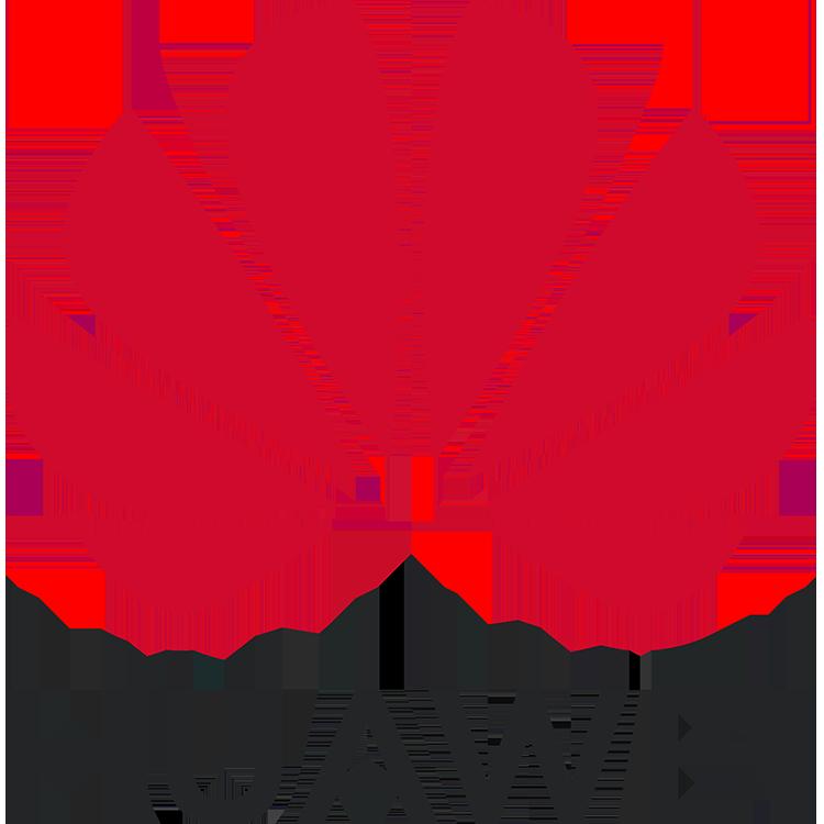 téléphonie marque Huawei